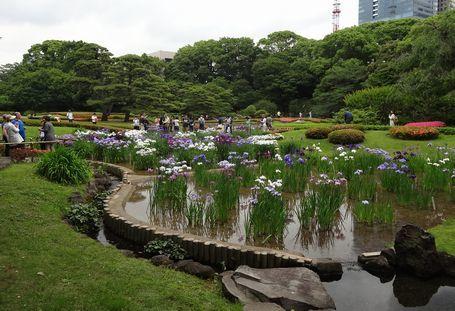 東御苑の二の丸庭園