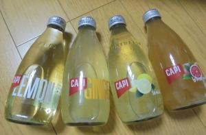 CAPI4種類