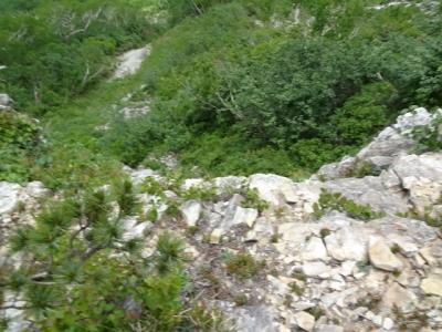DSC05834.jpg