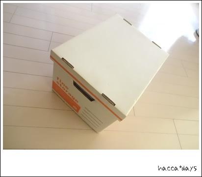DSC02907.jpg