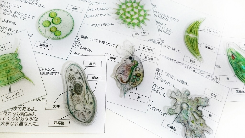 2017_ガクタメ_魅惑の微生物_02