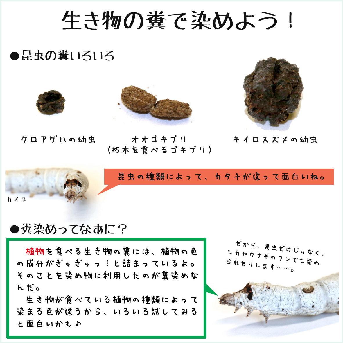 2017_箱庭動物園と遊蛾堂2_01