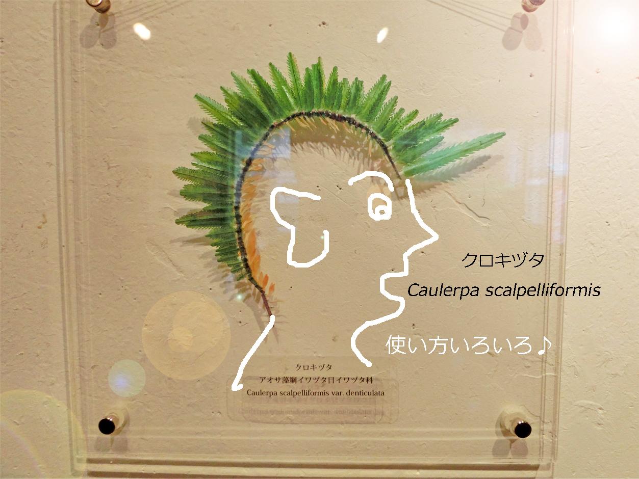 2017_ガクタメ_我流切紙人_01