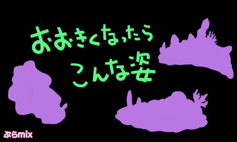 2017_ガクタメ_ぷらmix_02