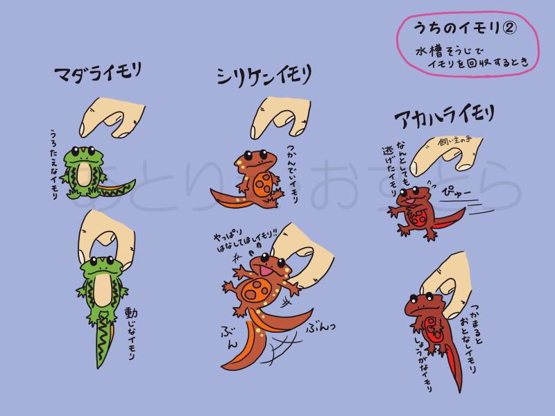 2017_ガクタメ_あとりえ・おすとら_02