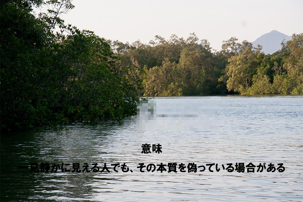 2017_ガクタメ_ボルネオギャラリー_02