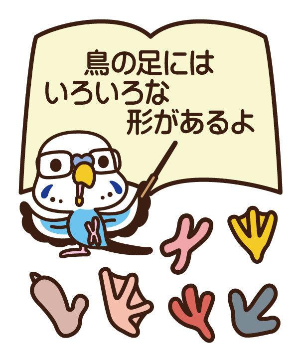 2017_ガクタメ_鳥が好きだ_01