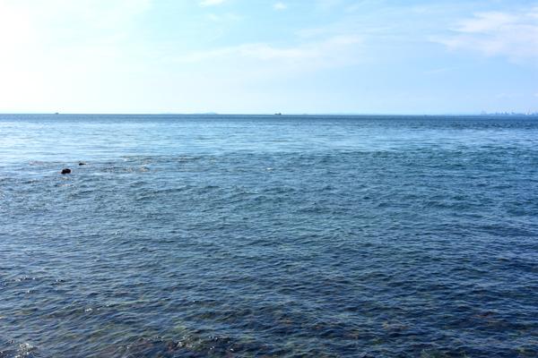 海は広いな