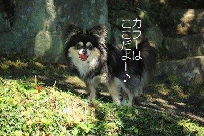 s-IMG_7210.jpg