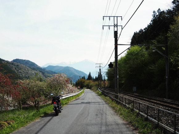 P5030060.jpg