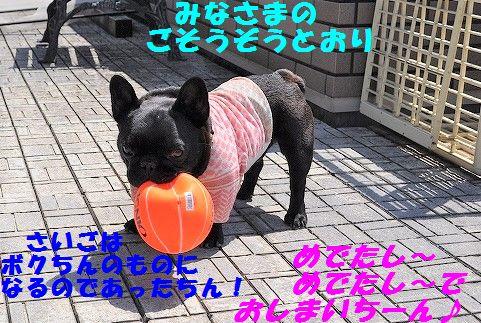 DSC_0411_20170529105526be5.jpg