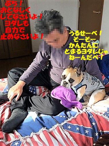 IMG_2290_20170508104412f68.jpg