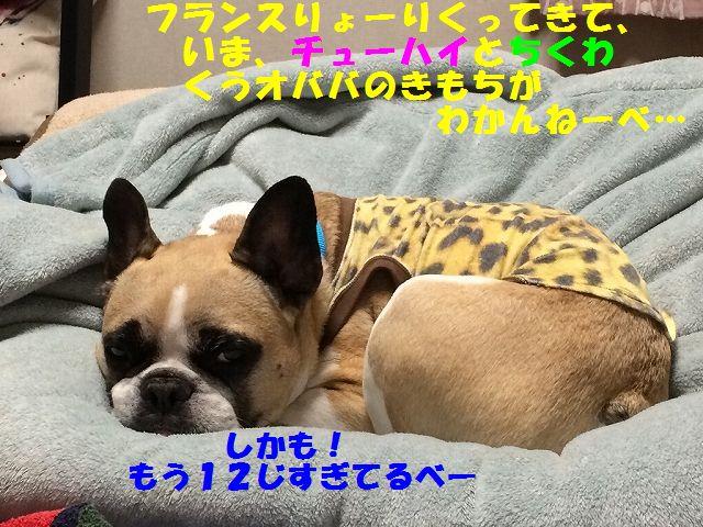 IMG_2572_201705181544204b7.jpg