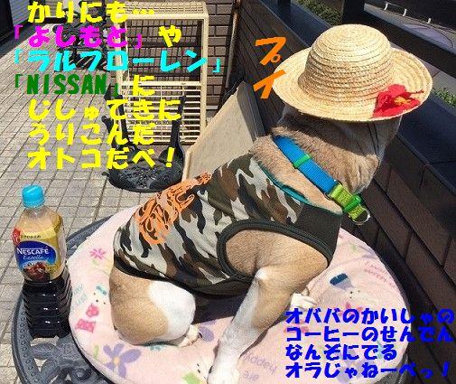 IMG_2677_20170523145632e25.jpg