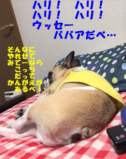 IMG_3116.jpg
