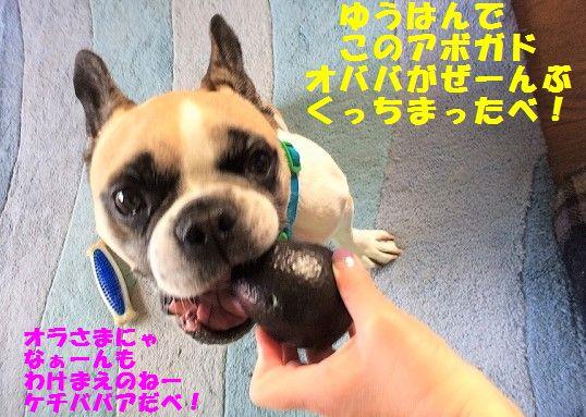 IMG_3263_201706191038194ca.jpg