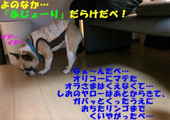 IMG_3279_201706210931119de.jpg