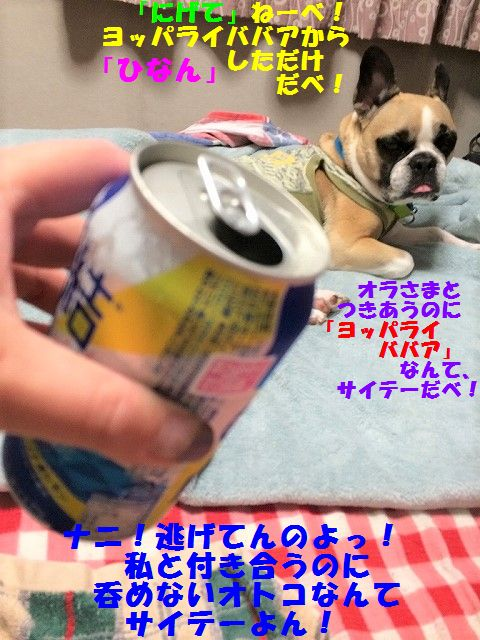 IMG_3667.jpg