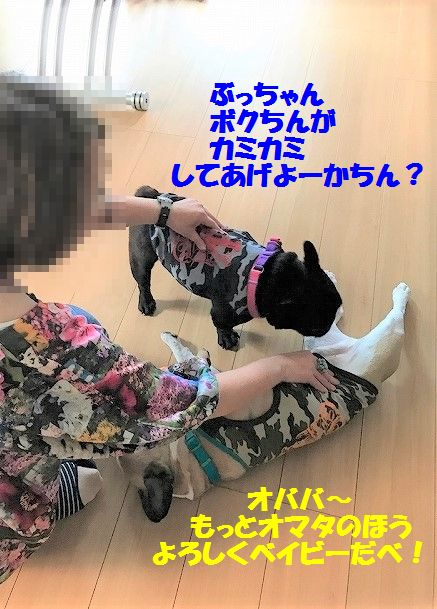 IMG_4089_2017072714033788a.jpg