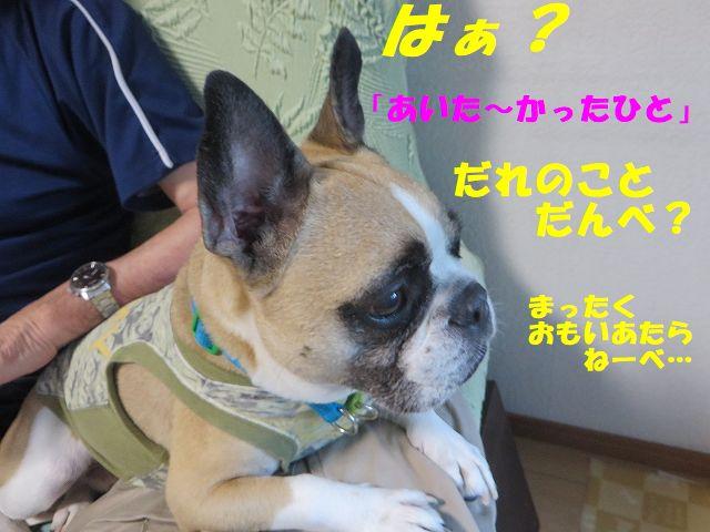 IMG_5221.jpg