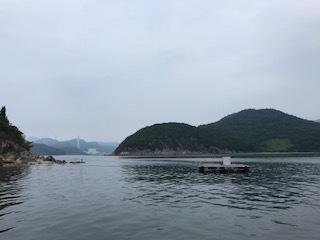 森島1707081