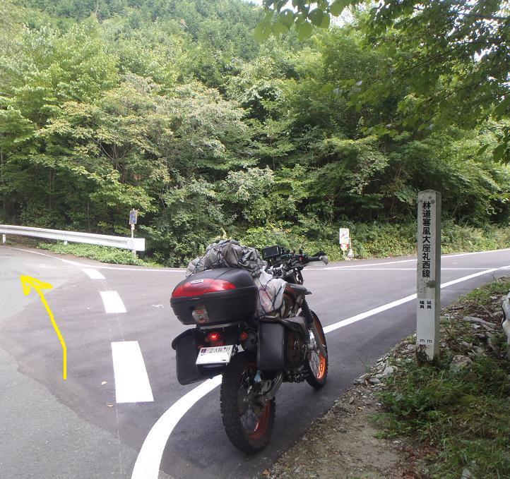 P9090050a.jpg
