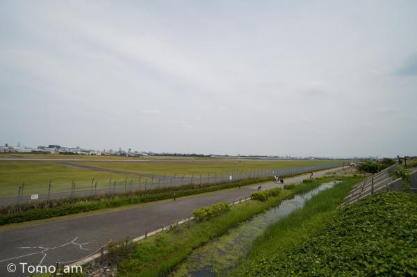 ND4_6282.jpg
