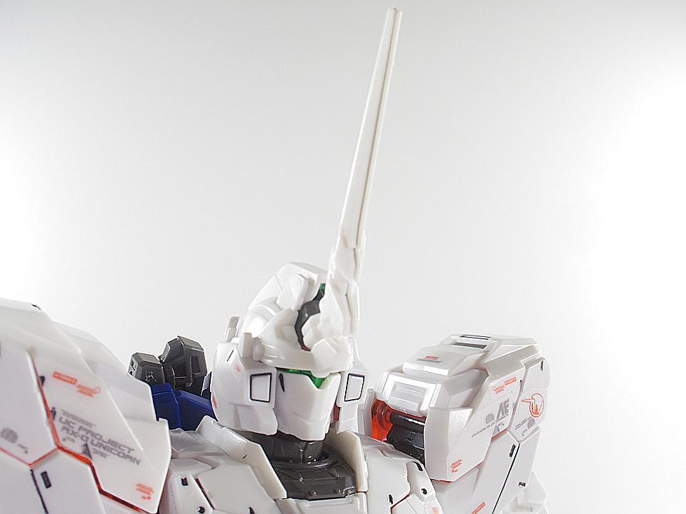 RG ユニコーン12