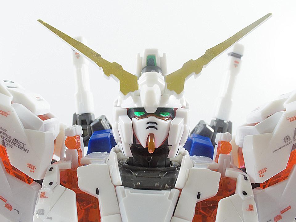 RG ユニコーン81