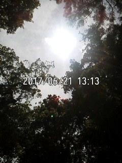 170621_1313~001