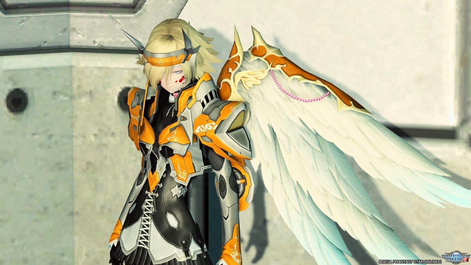 鎧装の翼 白 正面
