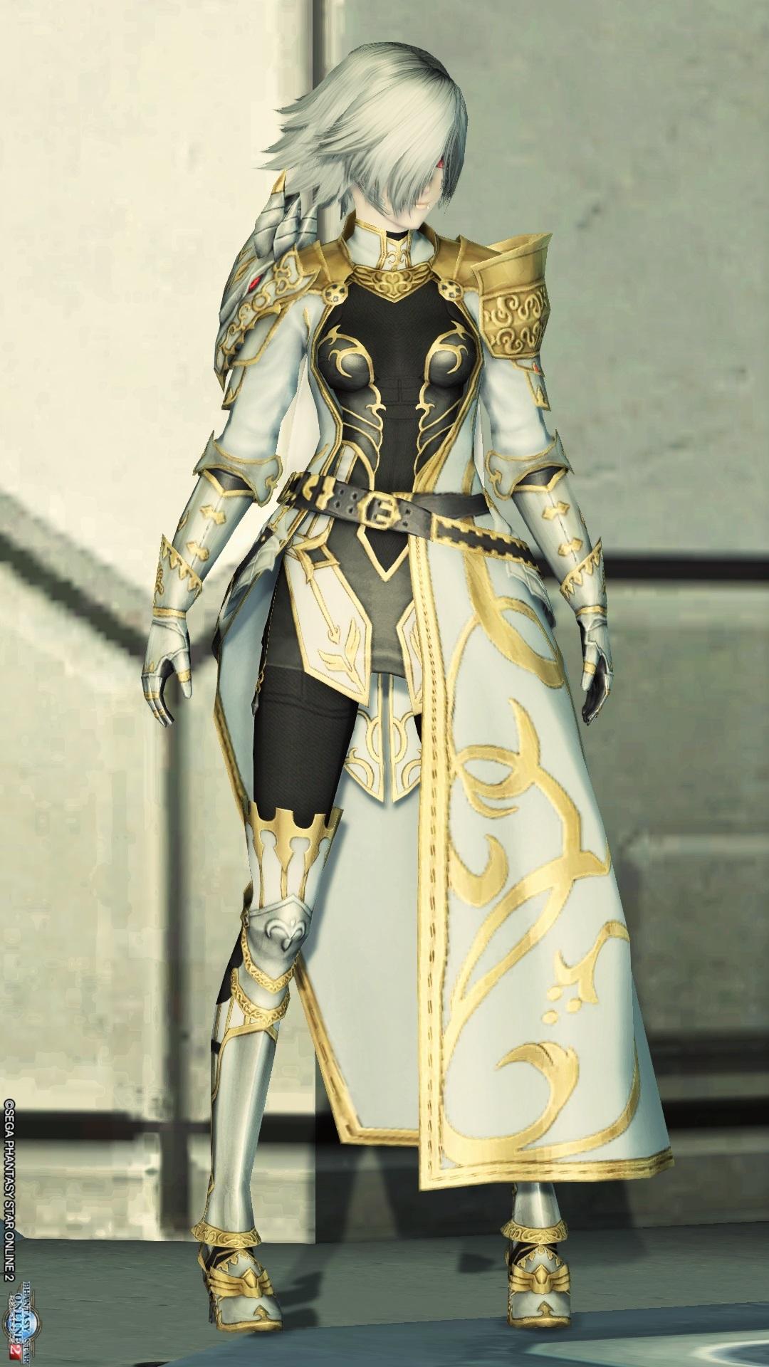 アリサの戦装束 正面