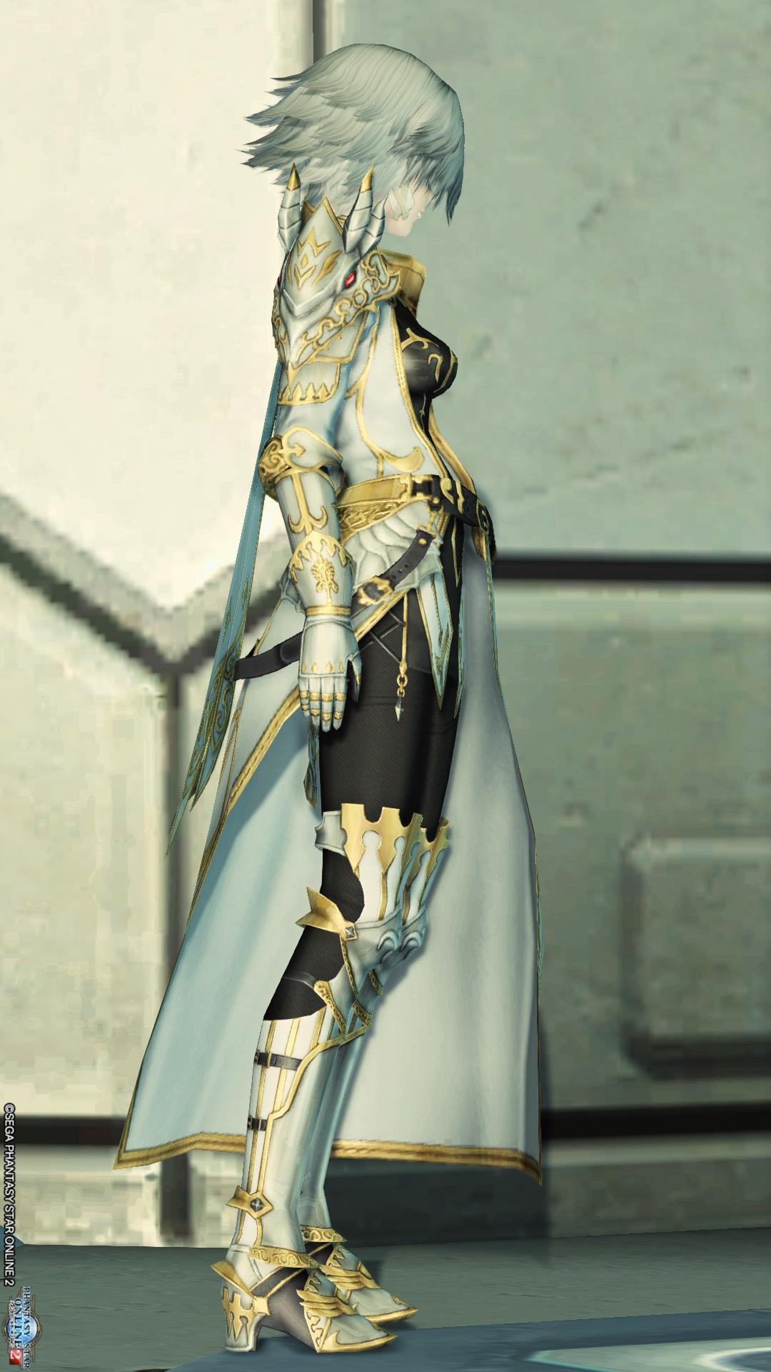 アリサの戦装束 右
