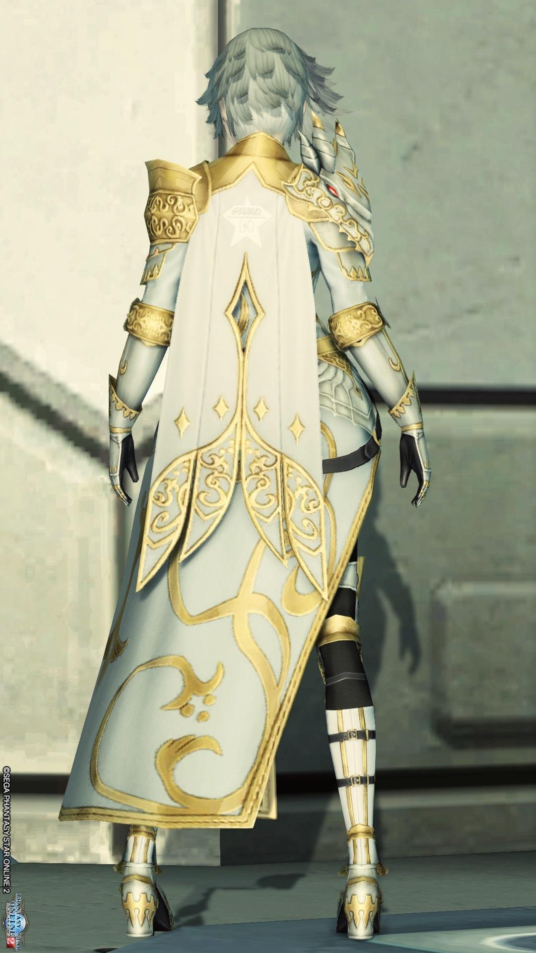 アリサの戦装束 後ろ