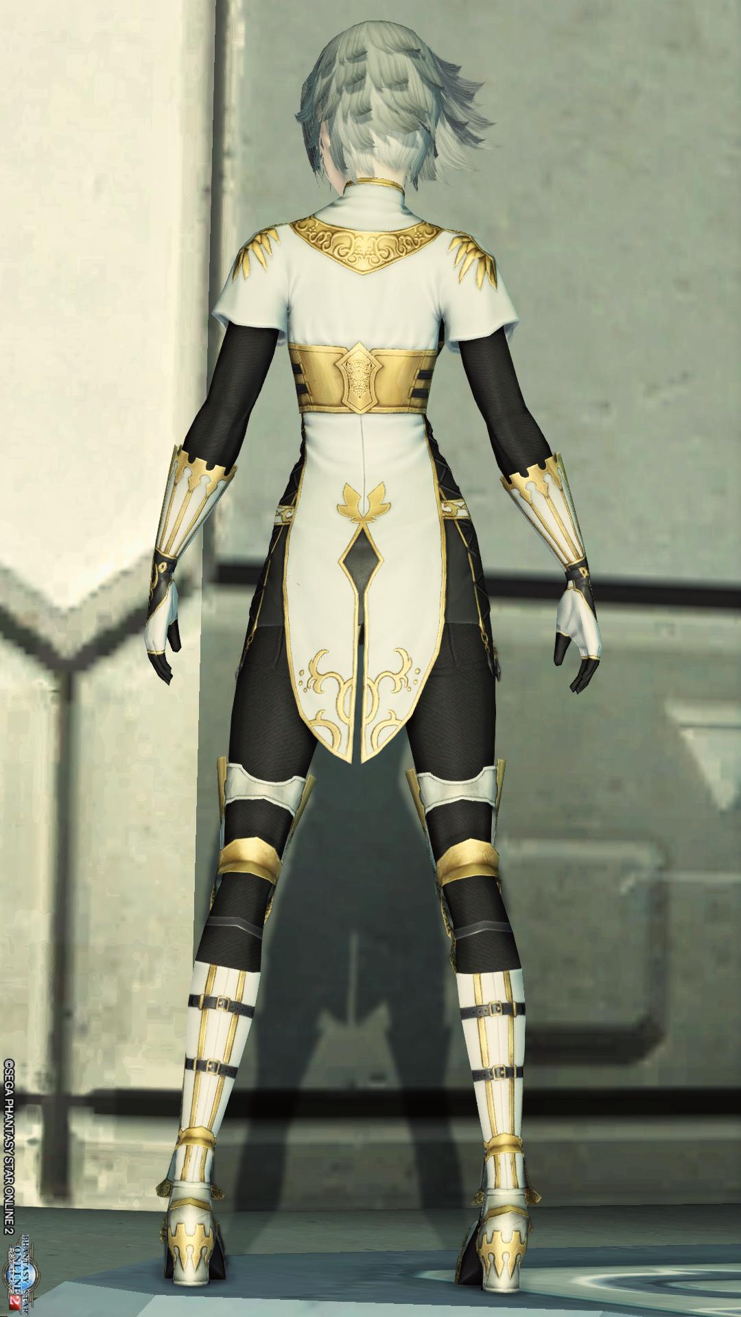 アリサの戦装束[Ba] 後ろ