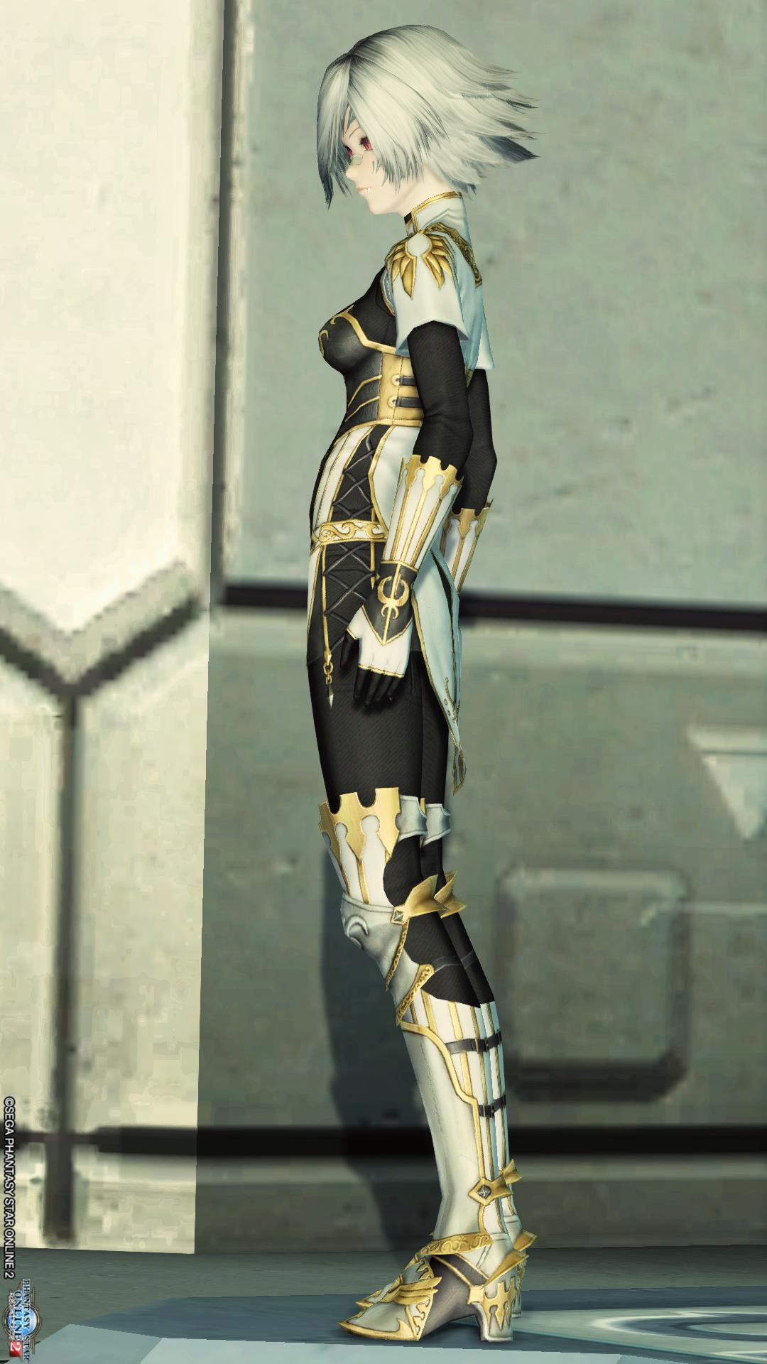 アリサの戦装束[Ba] 左