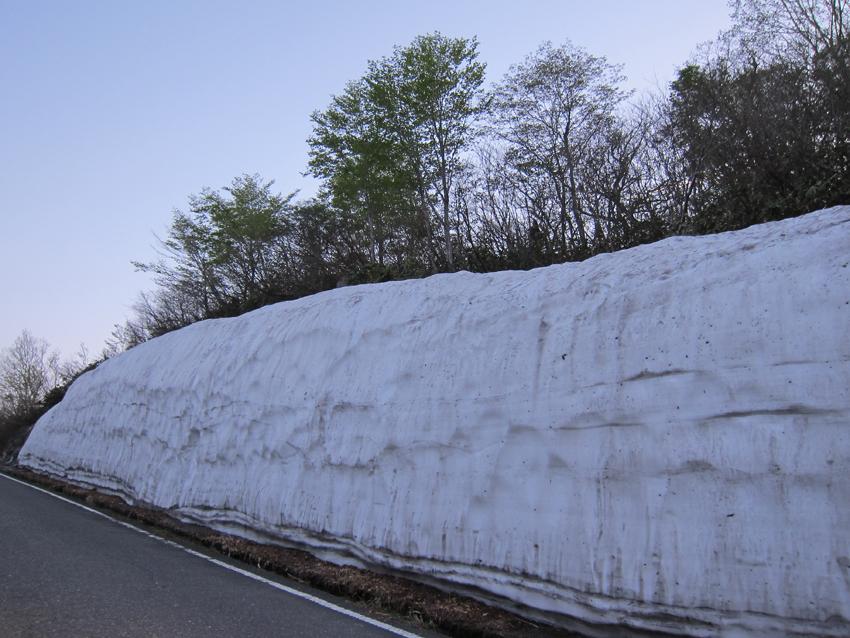 20170520県道42号雪壁