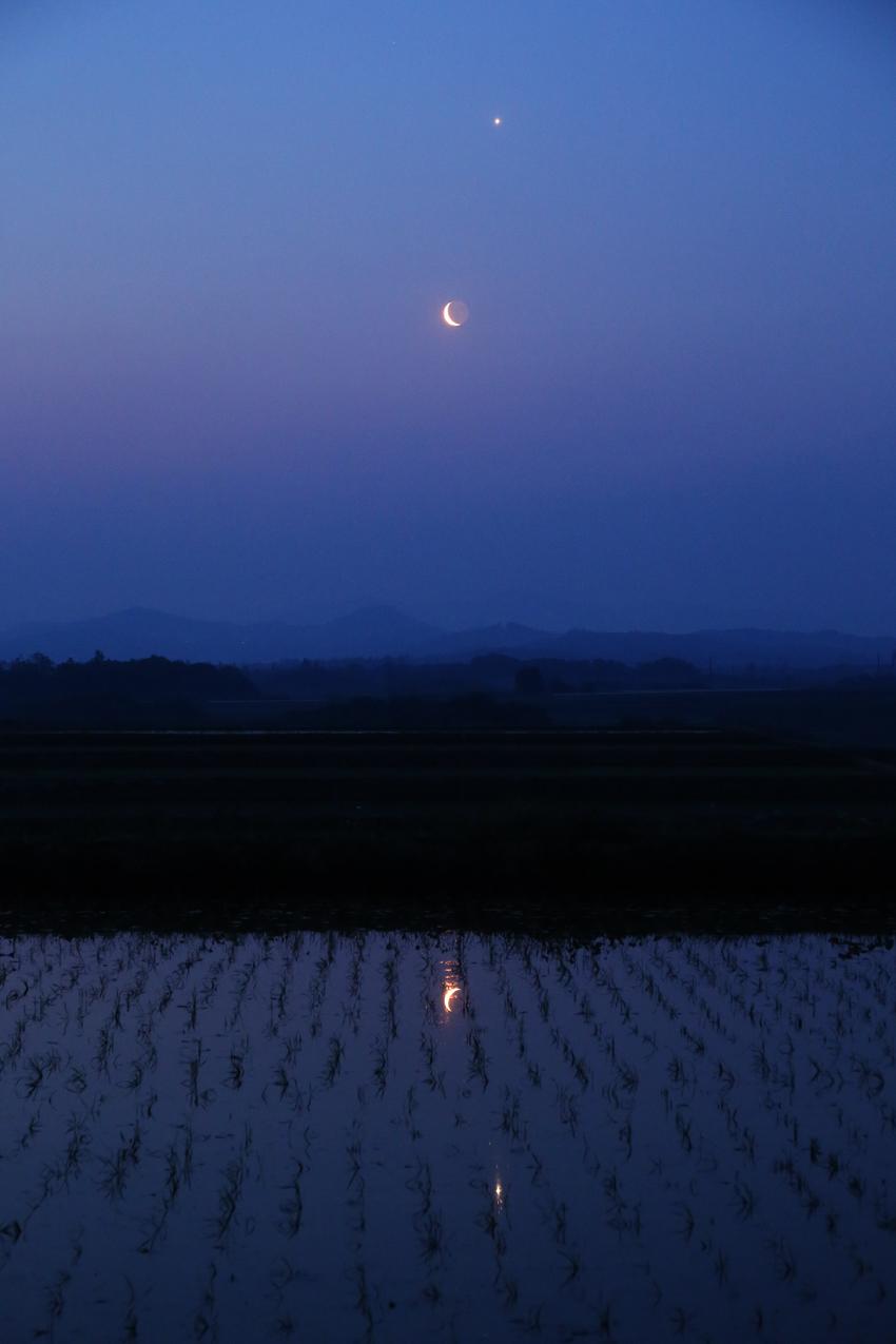 20170523水田に映る金星と月