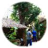 韓国 富川自然生態公園