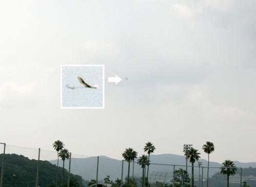 kh-18、オバハンの方、 その3。