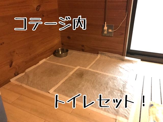 20170724215047412.jpg