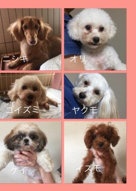 新入生0807-2