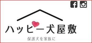 HP紹介ロゴ