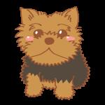 illustrain02-dog16-150x150.png