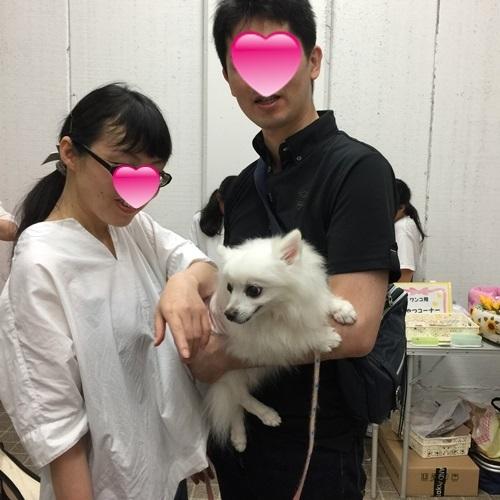 mini16IMG_5934-20170627.jpg