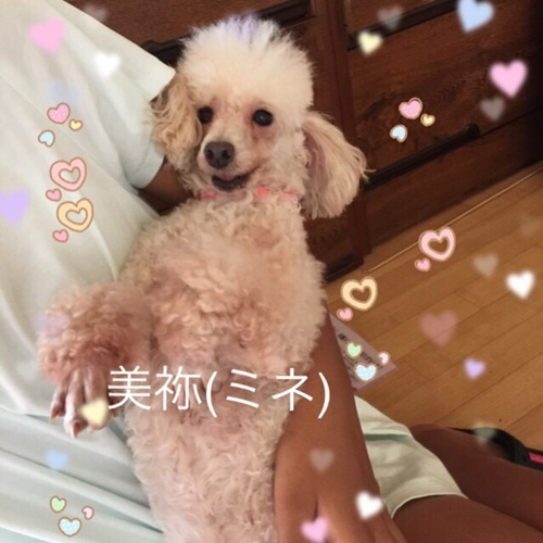 mini16IMG_6151-20170628.jpg