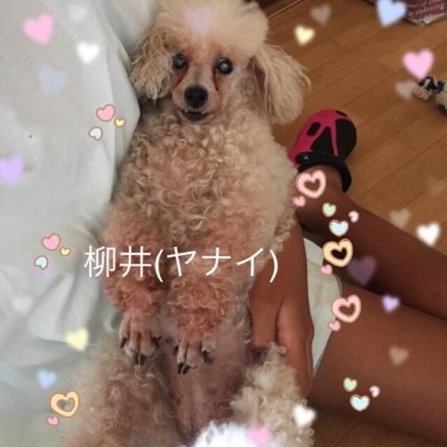 mini16IMG_6152-20170628.jpg