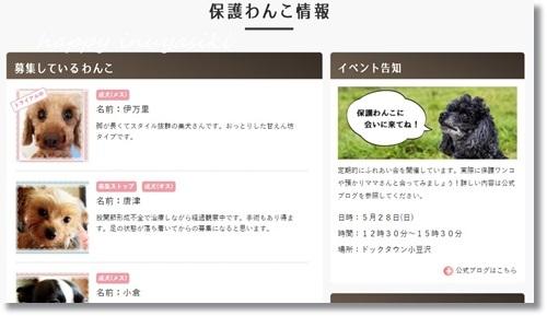 mini16IMG_7658-20170724.jpg