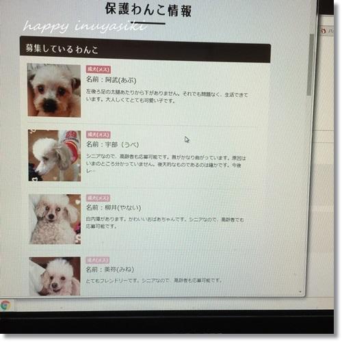 mini16IMG_7833-20170727.jpg