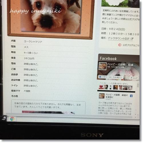 mini16IMG_7834-20170727.jpg